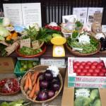 第2回 季節の野菜市開催