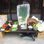 第3回 季節の野菜市開催