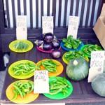 第4回 季節の野菜市開催
