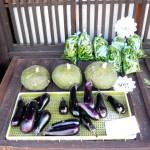 第5回 季節の野菜市開催