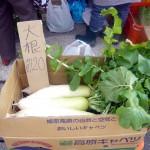 第7回 季節の野菜市開催