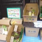 第7回 季節の野菜市