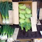 第10回季節の野菜市-2