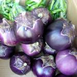 第16回 野菜販売のお知らせ 9月8日-2