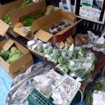 第16回 野菜市の模様 2013.10.20-2