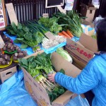 野菜市2014-2-2jpg