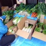 野菜市2014-2-1