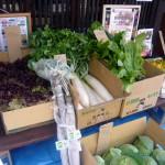 第18回 野菜販売のお知らせ-2