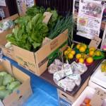 第18回 野菜販売のお知らせ-1