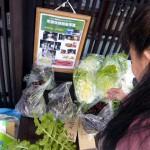 野菜市2014-2