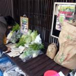 野菜市2014-4