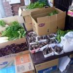 第20回 野菜販売のお知らせ